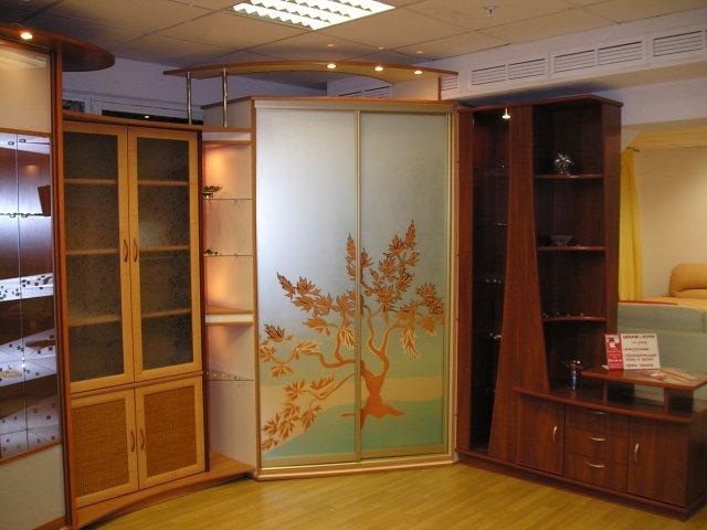 Угловой шкаф купе с фасадом, оформленным художественной росписью
